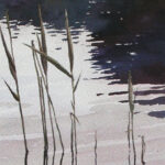 Exercise Reeds