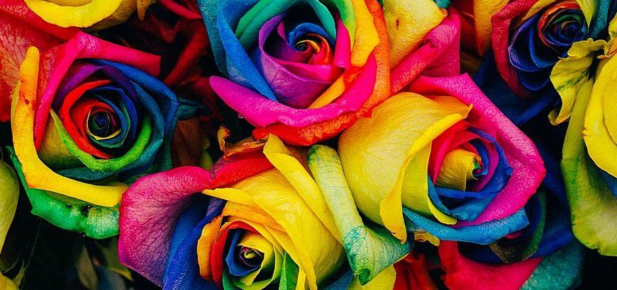 Premixed colors