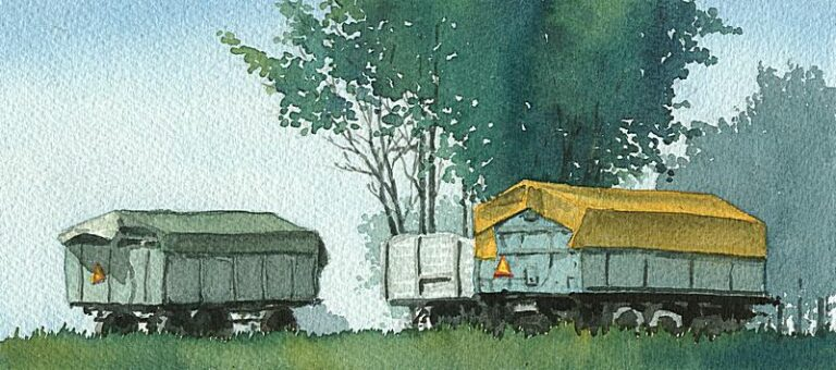 Trailers and trees