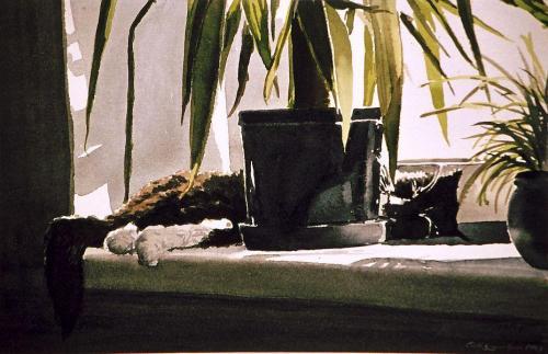 1987 katt vilar