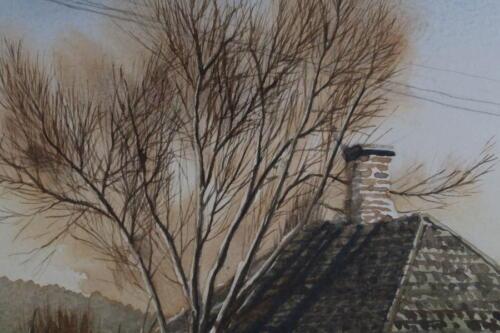 House tree and telephone pole 06