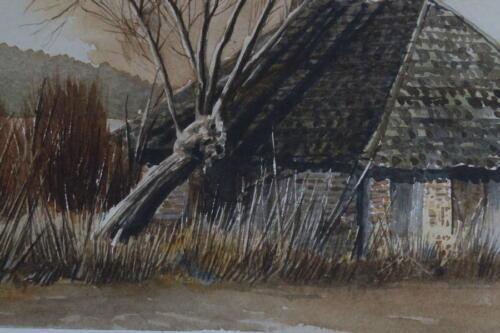 House tree and telephone pole 07